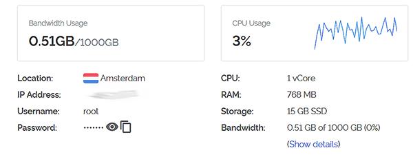 So viel sollte ein virtueller Server leisten.