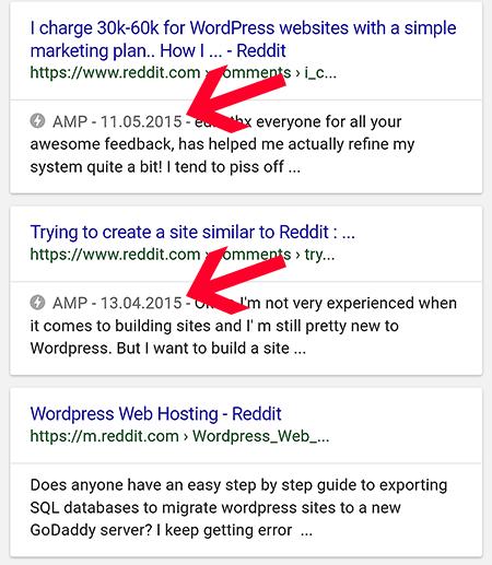 AMP grenzen sich klar von den anderen Suchergebnissen ab.