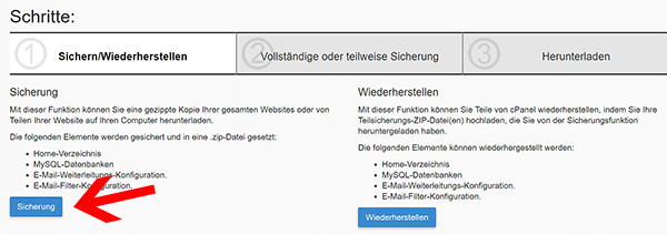 WordPress Datenbank in Cpanel exportieren